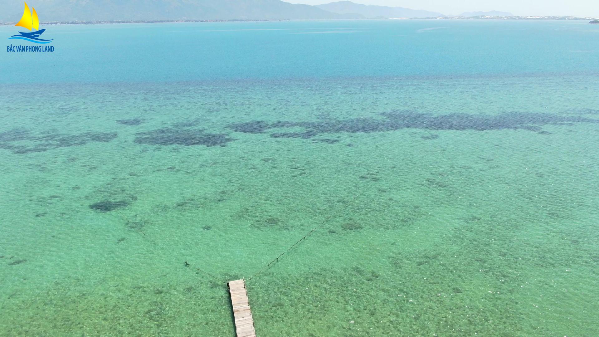 Mặt nước biển trong xanh bởi Rạn San Hô ở Đảo Điệp Sơn